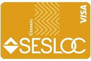 Secured Visa Card